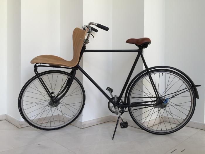 Arne's Bike - 1